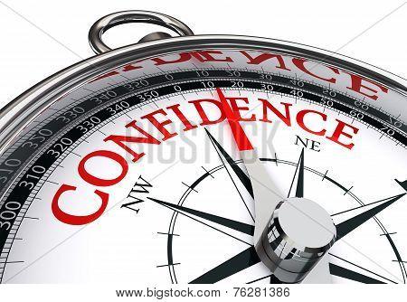 Confidence Conceptual Compass