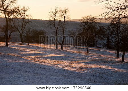 Landscape in winter against the light