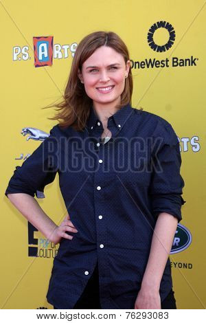 LOS ANGELES - NOV 16:  Emily Deschanel at the PS Arts Express Yourself Benefit at the Barker Hanger on November 16, 2014 in Santa Monica, CA