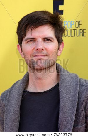LOS ANGELES - NOV 16:  Adam Scott at the PS Arts Express Yourself Benefit at the Barker Hanger on November 16, 2014 in Santa Monica, CA
