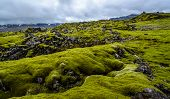foto of magma  - A vast lava field with green moss in Iceland - JPG