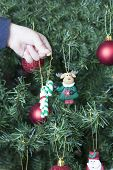 stock photo of rudolph  - closeup of a hand of a child decorating the Christmas tree hanging a adornment