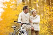 picture of mid autumn  - Active senior couple together enjoying romantic walk with bicycle in golden autumn park - JPG