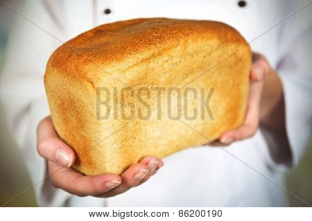 Fresh bread in female hands on light blurred background