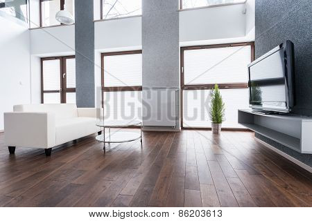 Exclusive Living Room Interior