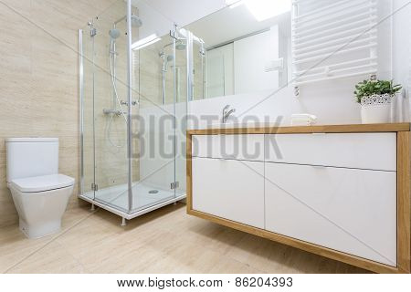 Washroom Interior In Traditional Design
