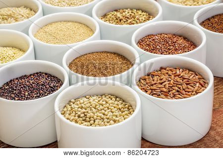healthy, gluten free grains collection (quinoa, brown rice, millet, amaranth, teff, buckwheat, sorghum), small round bowls against rustic wood