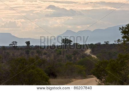 amazing african landscape, Kruger, South Africa