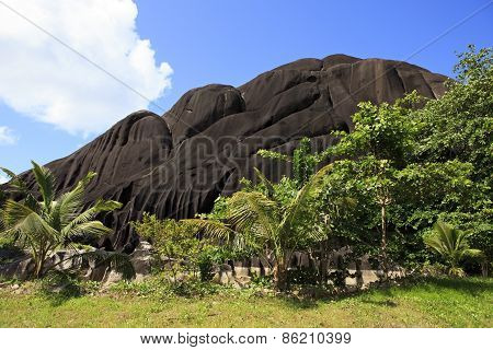 Beautiful enormous black granite rocks in the thickets of tropical vegetation.