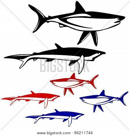 Set shark,  black and white outline. Vector illustration.