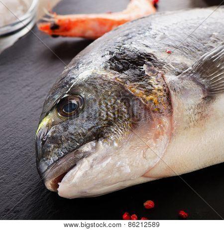 Fresh  Sea Bream - Healthy Food.