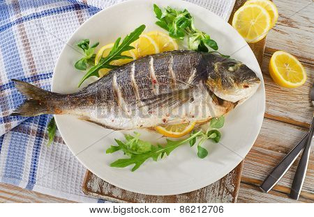 Sea Bream Fish On Plate