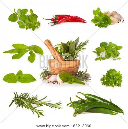 Various kind of fresh herbs with wooden mortar, isolated on white background