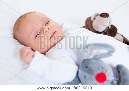 Cute baby boy on white bed