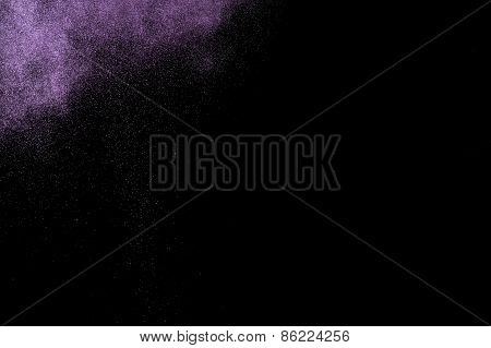 Abstract purple  paint Holi.