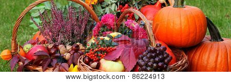 Fall Fruits And Vegetables