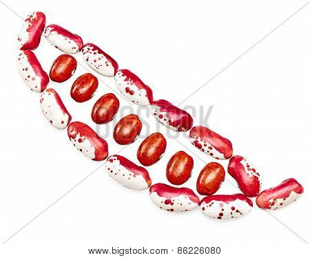 Colored Haricot In Pod Form. Mix Of Beans, Legumes On White Background. Closeup Food