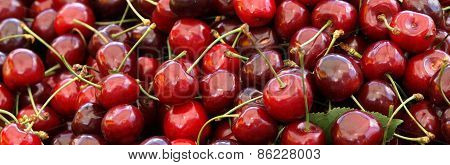 Juicy Ripe Cherries
