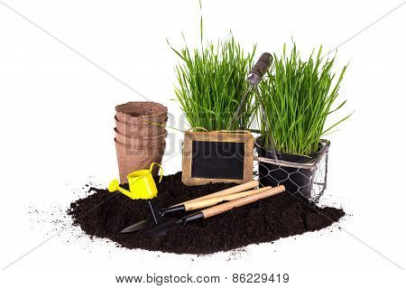 Grass In Pots, Ground  And Garden Tools