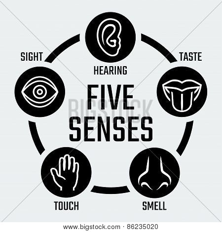 Five Senses Vector Icons Set