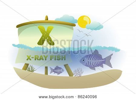 Funny Cartoon Alphabet X With X-ray fish