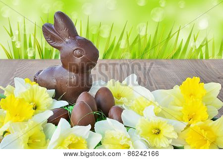 Easter Background, Chocolate Bunny, Eggs, Daffodils