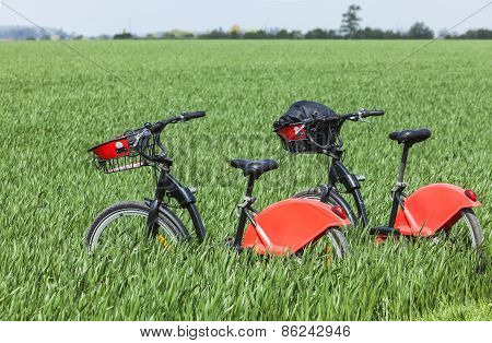 Urban Bicycles In A Green Field