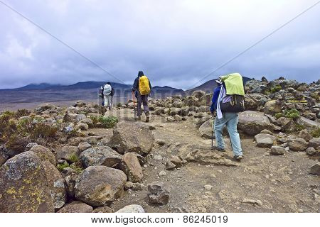 People Climbing The Mount Kilimanjaro, The Highest Mountain In Africa