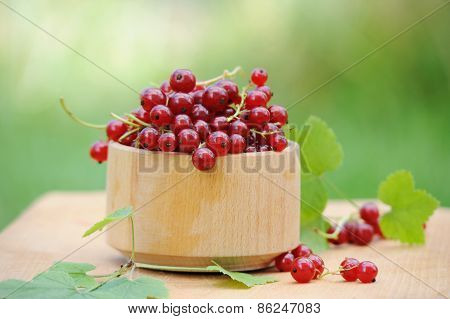 Wooden Bowl With Fresh Red Currants Outdoor
