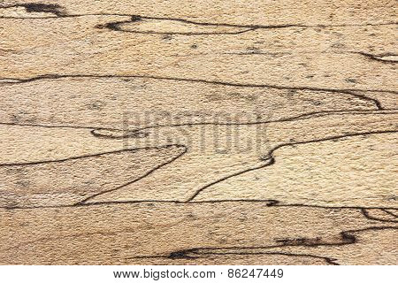 Spalted maple texture, with unique and distinctive black lines.