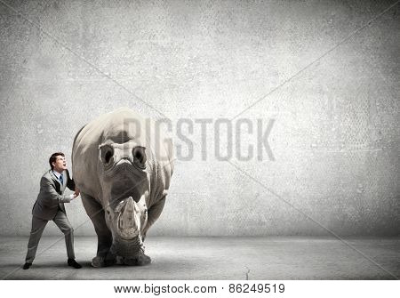 Businessman making an effort to move huge rhino