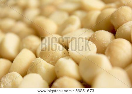 Macro Macadamia Nuts 2