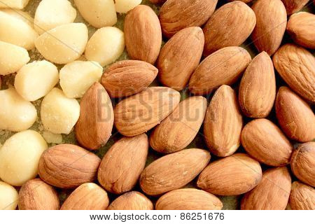 Macro Almonds and Macadamia Nuts 6