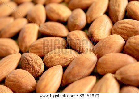 Macro Almonds 4