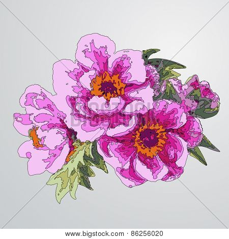 Decorative floral background with flowers of peony