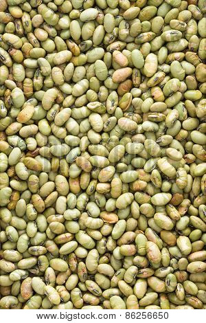 Plenty Dried Edamame Bean Seeds For Background