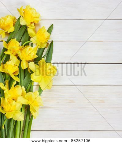 Bouquet Of Spring Narcissus Flowers On White Wooden Background