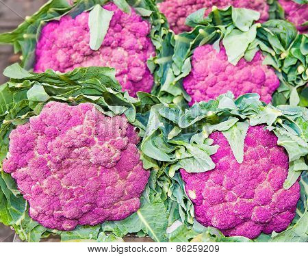 Group of  fresh purple cauliflower on vegetable market, Sicily