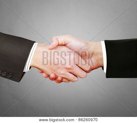the business men shaking hands