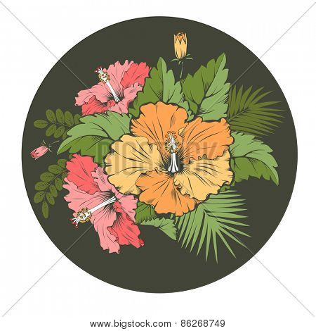 Exotic tropical flower hibiscus inside circle frame. Beautiful hand drawn element for different designs. Vector illustration.