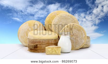 various forms of cheese with milk on the table and sky background