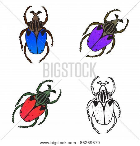 Bright Set With Colorful Bugs. Drawing Of Beetles. Insect On The Background With Gray.