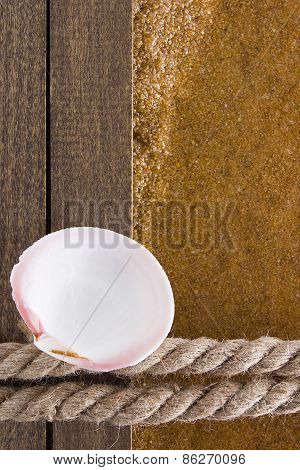Background With Seashell