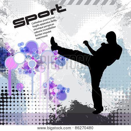 Warrior. Karate illustration. Vector