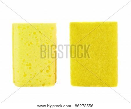 Kitchen sponge front and back view
