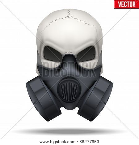 Human skull with Respirator mask. Vector