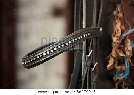 Close Up Of Leather Horse Bridle