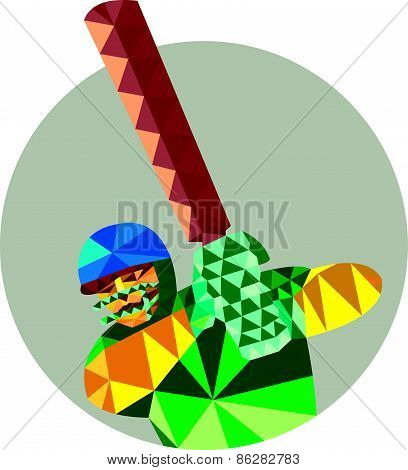 Cricket Player Batsman Batting Low Polygon