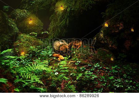 German Shepher Sleeping  Sheep-dog Laying On The Stone With Yellow Butterflies In Beautiful Forest L