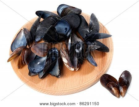 Shells Of Mussels On Cutting Board